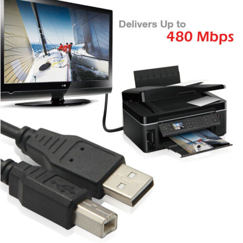 3FT New USB 2.0 CABLE A-B M//M for PRINTER SCANNER w//Ferrite Core 3 FT 1M