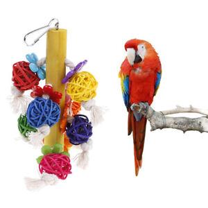 Oiseau-Perroquet-A-Macher-Jouets-Rotin-Naturel-Cage-Ball-Jouet-Preening-PM