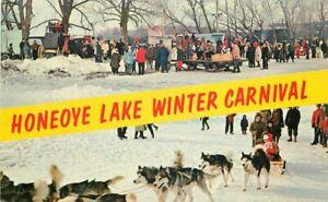 Annual-Honeoye-Lake-Winter-Carnival-1950s-Postcard-New-York-Sled-Dogs-6921