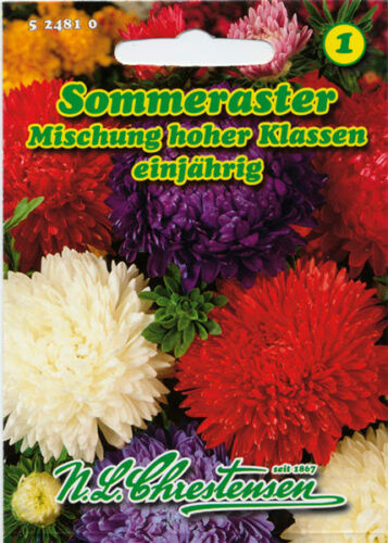 Sommeraster,Mischung,Saatgut,Callistephus chinensis,Blume,524810,NLC 1