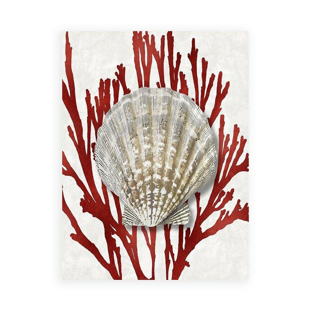 Stampa su Tela su Carta Poster o Quadro Kelly Caroline Shell Coral rot IV