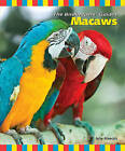 Macaws by Julie Mancini (Paperback / softback)