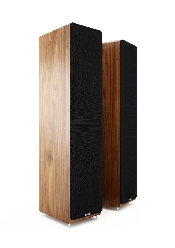 Acoustic Energy AE109 højtaler!