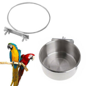 Stainless-Steel-Coop-Cup-Parrot-Food-Feeder-Macaw-Water-Bowl-For-Bird-Cage-r