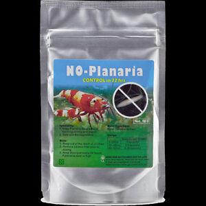 how to get rid of planaria in aquarium