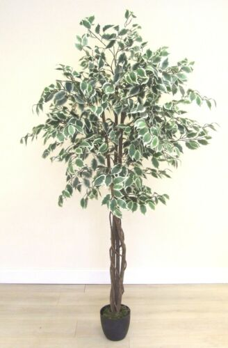 Realistic Topiary Artificial 6 Foot Ficus Tree Green or Variegated in Pot