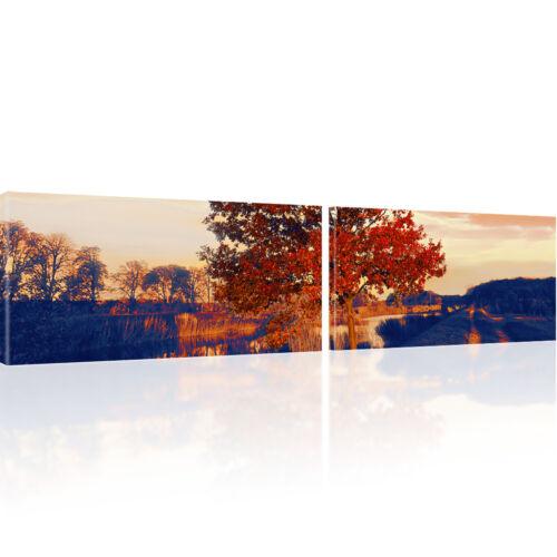 Bilder Roter Baum Wandbilder Landschaft Bild auf Leinwand Natur Kunstdruck