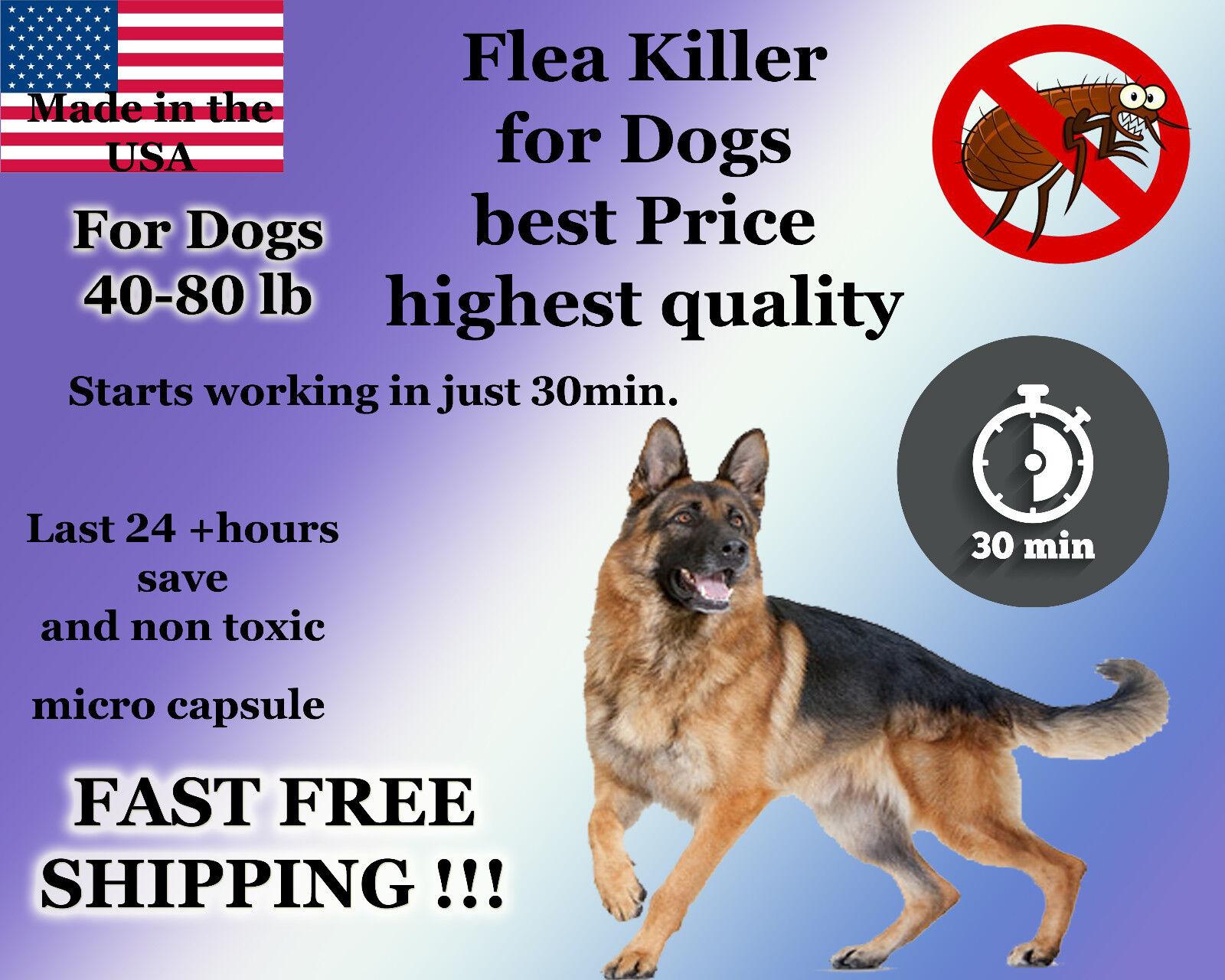 100 Capsules Instant Flea Killer Control Large Dogs 40-80lb +Soap Shampoo Sample