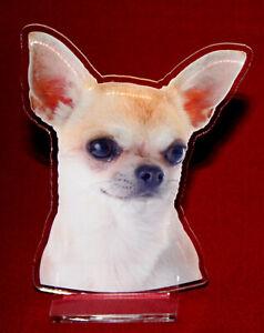 statuette-photosculptee-10x15-cm-chien-chihuahua-11b-dog-hund-perro-cane
