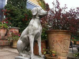 Pair of stone pointer dogsgarden stone ornamentsconcrete dogs image is loading pair of stone pointer dogs garden stone ornaments workwithnaturefo