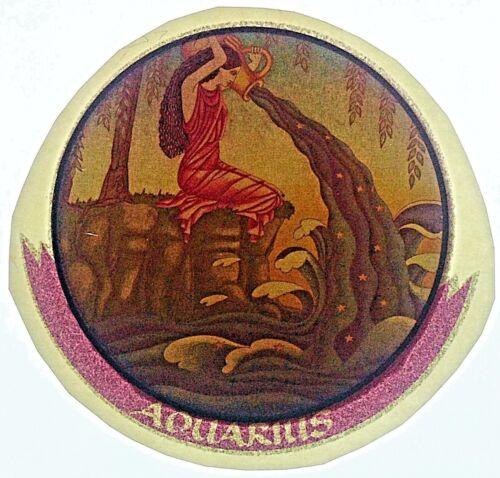 Vintage 70s Aquarius Iron On Transfer Glitter Jan 20-Feb 18 Horoscope