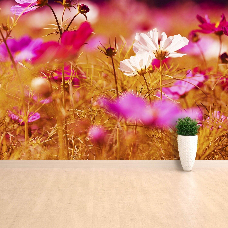 Fototapete Selbstklebend Einfach ablösbar Mehrfach klebbar Kosmos Blume