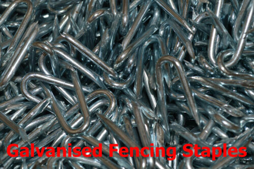 15mm x 1.60mm Galvanised Fencing Netting Staples U Nails Presser Point