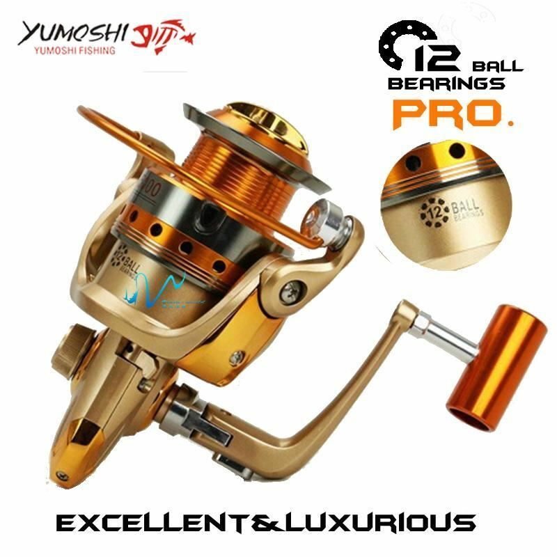 Spinning reel 12BB 5.5 1 Drag power 5007000 series lightweight strength Fishing