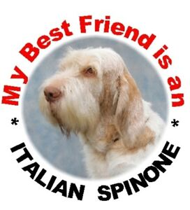 2-Italian-Spinone-Round-Car-Stickers-By-Starprint-Auto-combined-postage