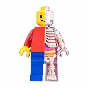4D-Master-Brick-Man-Funny-Anatomy-by-Jason-Freeny