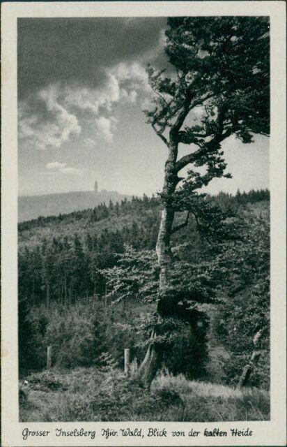 Ansichtskarte Grosser Inselsberg Blick von kalten Heide  (Nr.9030)
