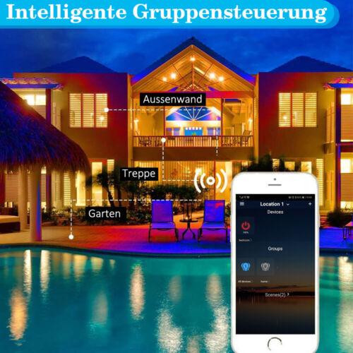 Bluetooth LED Fluter Außen Strahler Kaltweiß+Warmweiß+RGB Mit Fernbedienung 230V