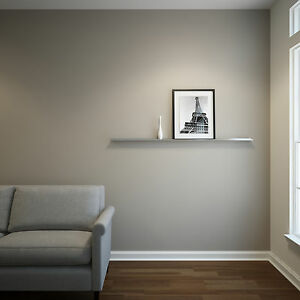 5ft Stainless Steel Floating Ledge for Photos and Pictures, Wall Shelf
