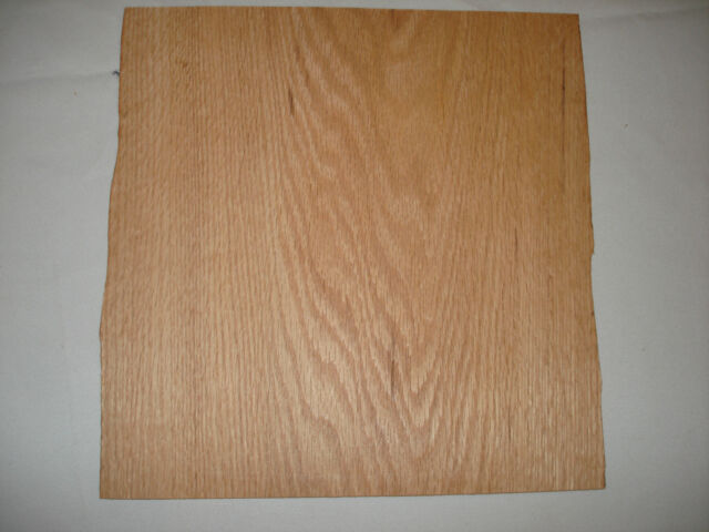 ONE VINTAGE RED OAK VENEER 12/'/' X 24/'/' X 1//20/'/' THICK OVER 40 YEARS OLD NOS