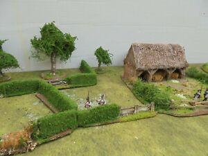 HEDGE  SECTIONS 28mm wargames made to order NAPOLEONIC BOLT ACTION ecw