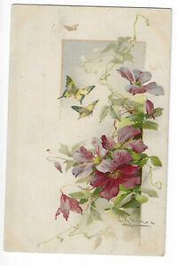 Illustration Signed Catharina Klein - Flowers
