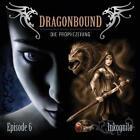 Dragonbound 06. Inkognito (2011)