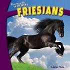 Friesians by Lorijo Metz (Hardback, 2012)