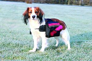 Backpack-for-Dogs-Black-Various-Sizes