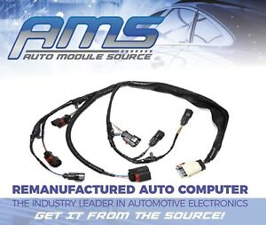 image is loading 2001-2002-2003-new-engine-injector-harness-dodge-