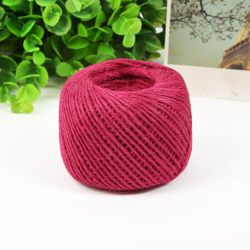 NEW Retro Natural Colourful Hemp Rope Twine String DIY Cord Craft Making A71
