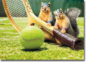 Squirrel tennis love funny birthday card greeting card by avanti image is loading squirrel tennis love funny birthday card greeting card m4hsunfo Choice Image
