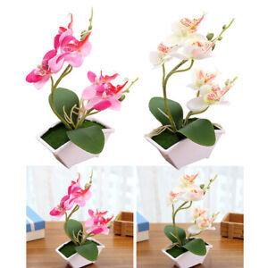 2x-Decorazioni-Per-Ufficio-Con-Stelo-Di-Fiori-Finti-Vintage-Bonsai-Di-Orchidea