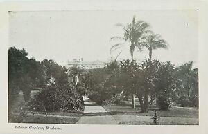 BRISBANE-BOTANIC-GARDENS-QUEENSLAND-EARLY-1900-039-s-POSTCARD