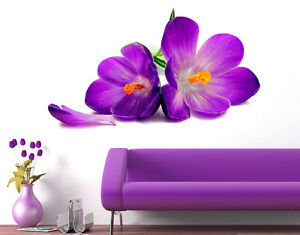 6900049   Wall Stickers Flowers Beautiful Spring Crocus Lily