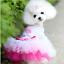 Pet-Small-Dog-Cat-Clothes-Puppy-Cotton-Lace-Tutu-Skirt-Apparel-Princess-Dress thumbnail 44