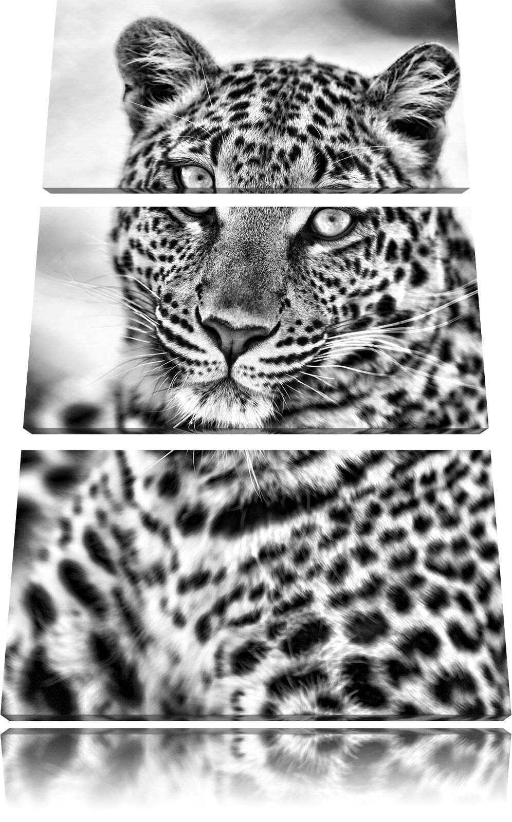 Bello Leopardato 3-Teiler Quadro su Tel Decorazione Parete Stampa Artistica