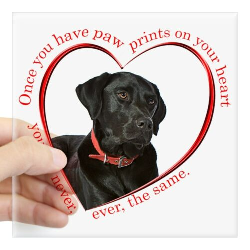 CafePress Lab Paw Prints Square Sticker 3 X 3 Square Sticker 1181823315