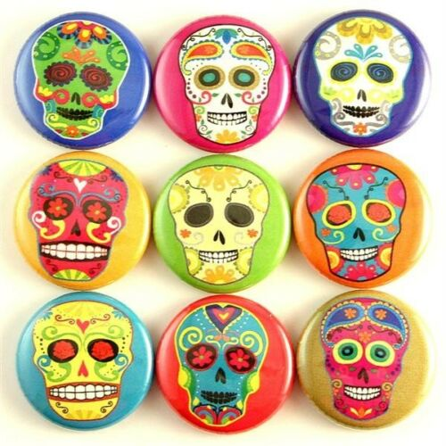 day of the dead rainbow skull magnet pin button cab charm gift bag party favor