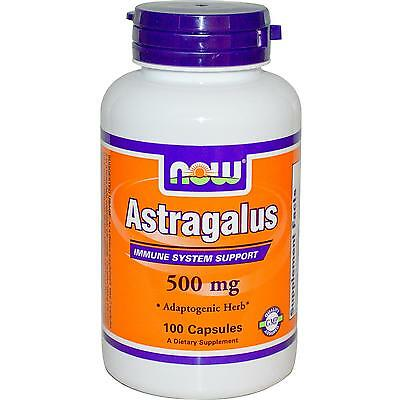 Astragalus - 100 - 500mg Capsules by Now Foods - Immune System Support