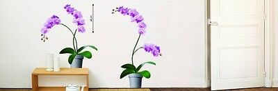 Wandtattoo Orchidee Blume Asien Japan China Chinesisch
