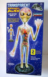 Maquette    Anatomique Géant  roswell Alien