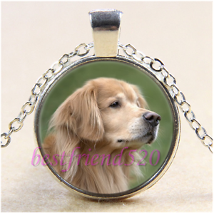 Golden Retriever Photo Cabochon Glass Tibet Silver Chain Pendant Necklace#CB55
