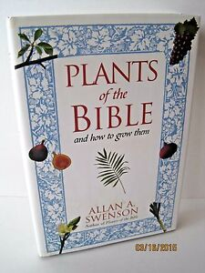 Plants Of The Bible And How To Grow Them By Allan A