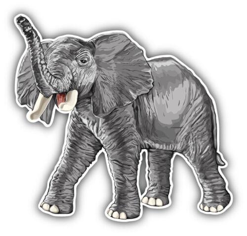 "Realistic Elephant Car Bumper Sticker Decal /""SIZES/"""