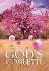 God's Confetti by Daniel Morse (Hardback, 2011)