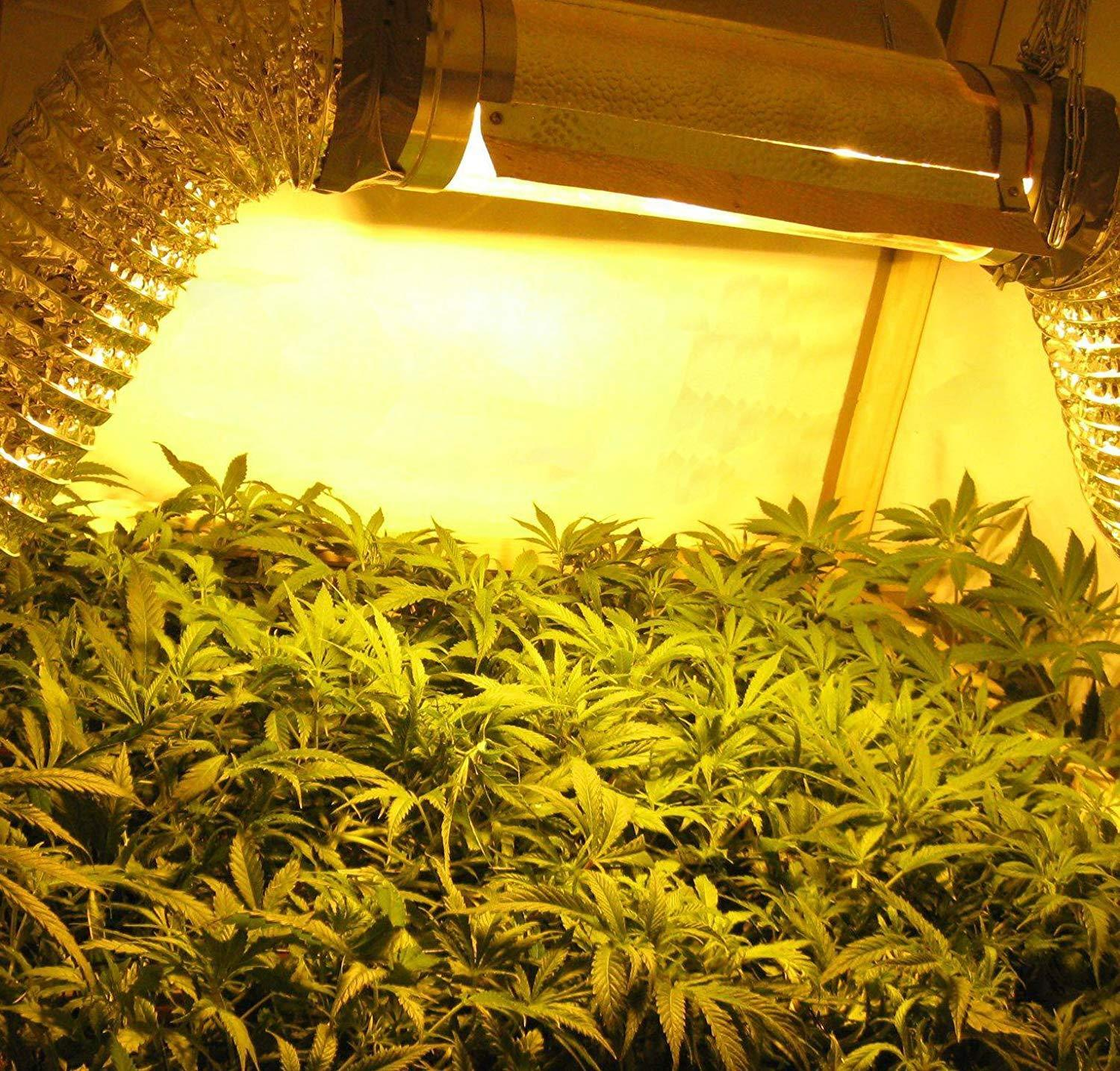 iPower 6/'/' Inch Cool Tube Reflector Hood for HPS MH Grow Light XL Wing