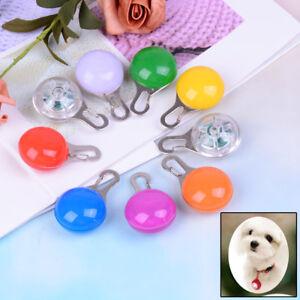 Fascinating-Pet-Dog-Cat-Puppy-LED-Flashing-Collar-Safety-Night-Light-Pendant-gt