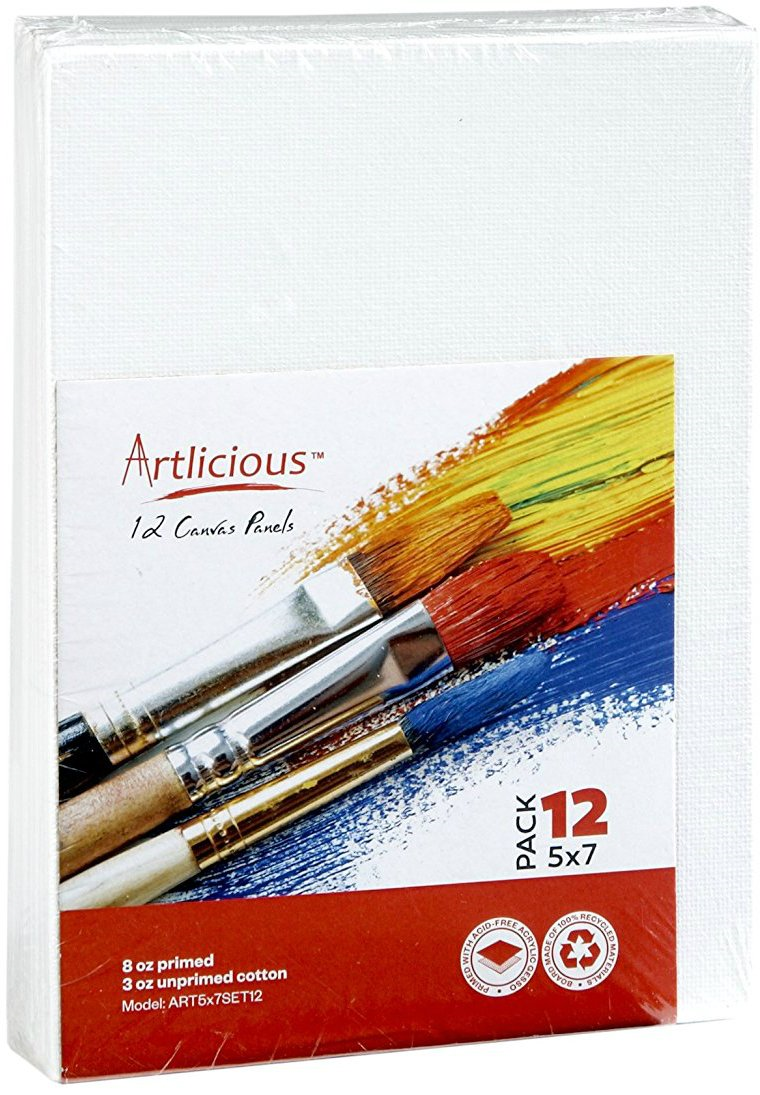 Artlicious Canvas Panels 6 Pack 16X20 Super Value Pack Artist Canvas Boards for Painting