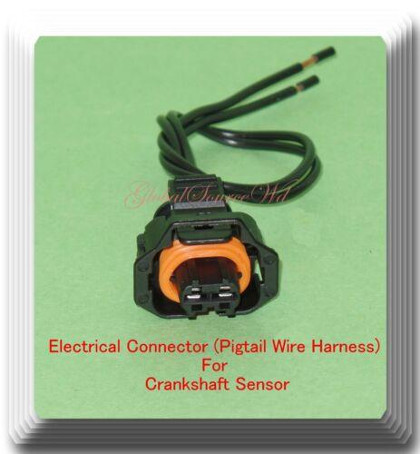 Connector of Crankshaft Position Sensor PC934 Fits Hyundai Kia 2010-2019